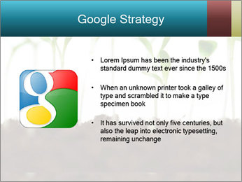 New Sprouts PowerPoint Template - Slide 10