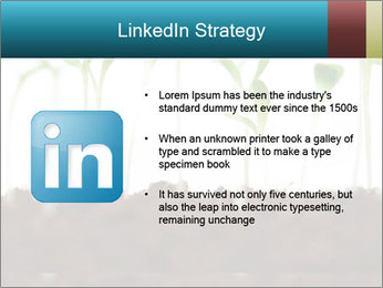 New Sprouts PowerPoint Template - Slide 12