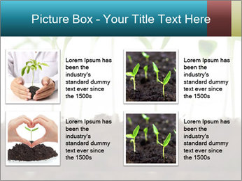 New Sprouts PowerPoint Template - Slide 14