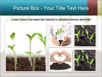 New Sprouts PowerPoint Template - Slide 19