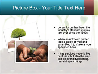 New Sprouts PowerPoint Template - Slide 20