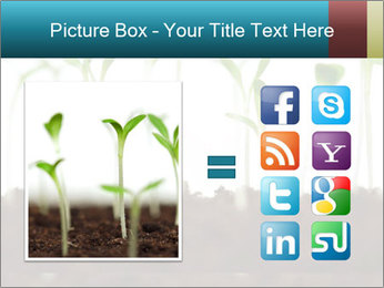 New Sprouts PowerPoint Template - Slide 21