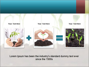 New Sprouts PowerPoint Template - Slide 22