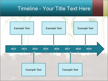 New Sprouts PowerPoint Template - Slide 28