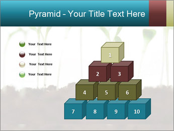 New Sprouts PowerPoint Template - Slide 31