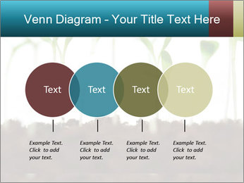 New Sprouts PowerPoint Template - Slide 32