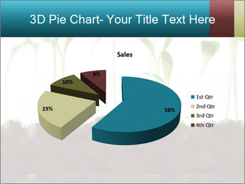 New Sprouts PowerPoint Template - Slide 35