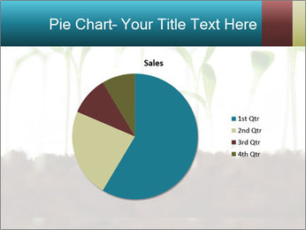 New Sprouts PowerPoint Template - Slide 36