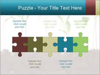 New Sprouts PowerPoint Template - Slide 41