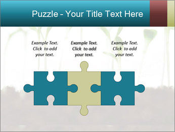 New Sprouts PowerPoint Template - Slide 42