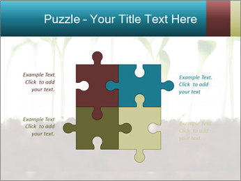 New Sprouts PowerPoint Template - Slide 43