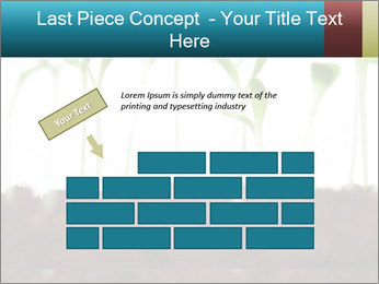 New Sprouts PowerPoint Template - Slide 46