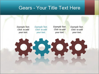 New Sprouts PowerPoint Template - Slide 48
