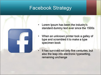 New Sprouts PowerPoint Template - Slide 6