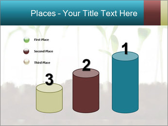 New Sprouts PowerPoint Template - Slide 65