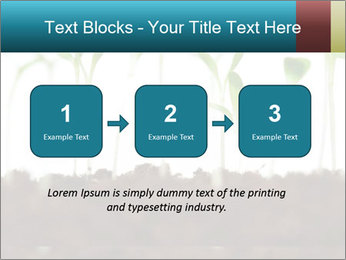 New Sprouts PowerPoint Template - Slide 71