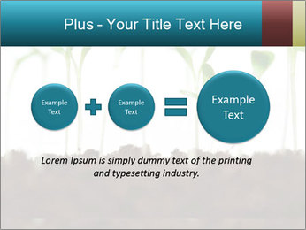 New Sprouts PowerPoint Template - Slide 75