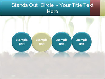 New Sprouts PowerPoint Template - Slide 76