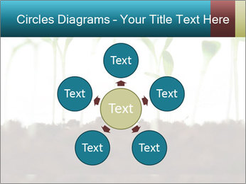 New Sprouts PowerPoint Template - Slide 78