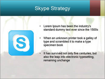 New Sprouts PowerPoint Template - Slide 8