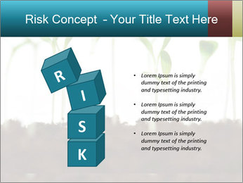 New Sprouts PowerPoint Template - Slide 81