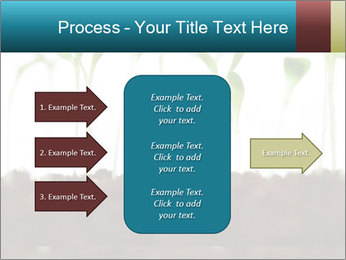 New Sprouts PowerPoint Template - Slide 85