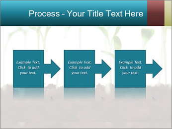 New Sprouts PowerPoint Template - Slide 88