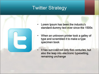New Sprouts PowerPoint Template - Slide 9