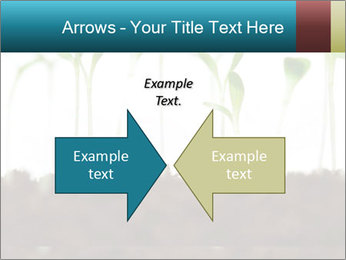 New Sprouts PowerPoint Template - Slide 90