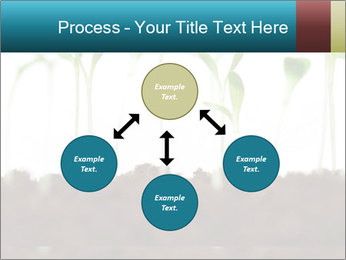 New Sprouts PowerPoint Template - Slide 91