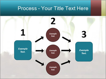 New Sprouts PowerPoint Template - Slide 92