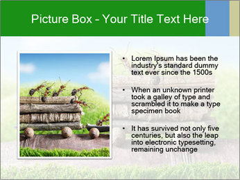 Fairytale With Ants PowerPoint Template - Slide 13