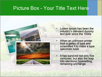 Fairytale With Ants PowerPoint Template - Slide 20