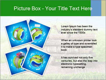 Fairytale With Ants PowerPoint Template - Slide 23