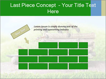 Fairytale With Ants PowerPoint Template - Slide 46