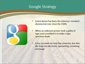 Sunrise In Wineyard PowerPoint Template - Slide 10