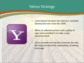 Sunrise In Wineyard PowerPoint Template - Slide 11