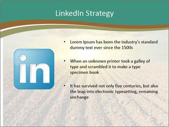 Sunrise In Wineyard PowerPoint Template - Slide 12