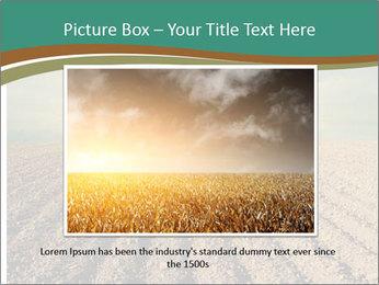 Sunrise In Wineyard PowerPoint Template - Slide 15
