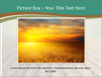 Sunrise In Wineyard PowerPoint Template - Slide 16