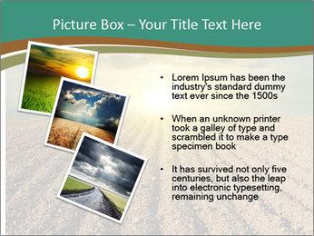 Sunrise In Wineyard PowerPoint Template - Slide 17