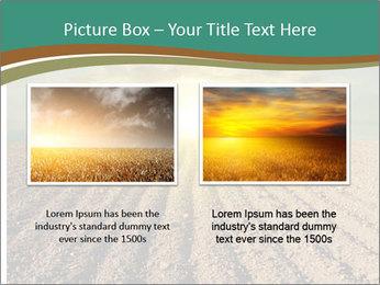 Sunrise In Wineyard PowerPoint Template - Slide 18