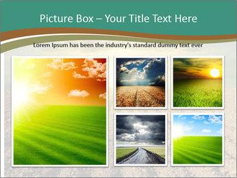 Sunrise In Wineyard PowerPoint Template - Slide 19