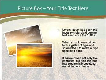Sunrise In Wineyard PowerPoint Template - Slide 20