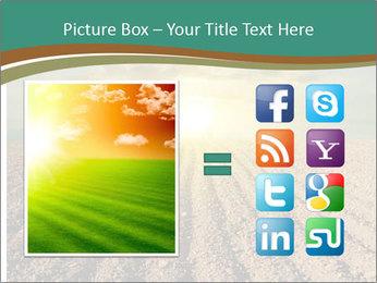 Sunrise In Wineyard PowerPoint Template - Slide 21