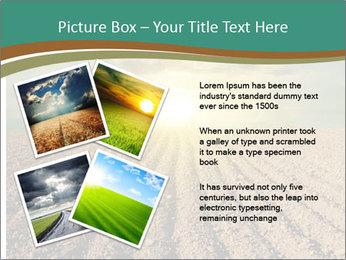Sunrise In Wineyard PowerPoint Template - Slide 23