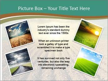 Sunrise In Wineyard PowerPoint Template - Slide 24