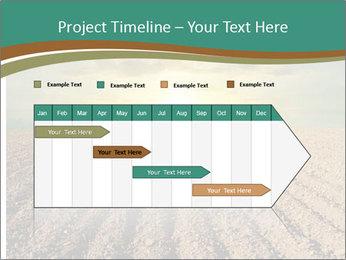 Sunrise In Wineyard PowerPoint Template - Slide 25