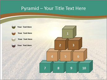 Sunrise In Wineyard PowerPoint Template - Slide 31