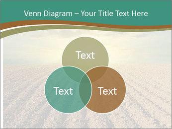 Sunrise In Wineyard PowerPoint Template - Slide 33